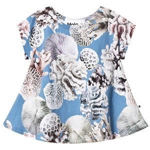 Molo Riva T-Shirt  Reef 104 cm (3-4 år)